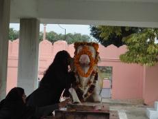 2014-01-22 Varanasi - Templo Tulsi Manas (8)